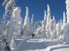 Wetter und Tageslicht in Finnland - thisisFINLAND