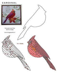 Irisvouwen: Cardinal                                                                                                                                                                                 More