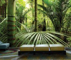 Rainforest 12' x 8' (3,66m x 2,44m)