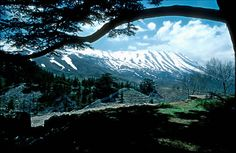 """Climate Change in Lebanon: """"Skiing in Our Thoughts"""" — Parag Khanna"""