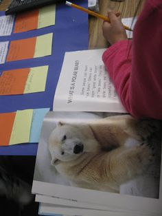 We're way into our animal unit and I'm needing to wrap things up and move on.  We've spent time learning the words related to this unit and ...