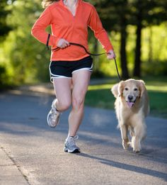Kyla is getting older but still loves a good run! 10 Tips for Running with Your Dog