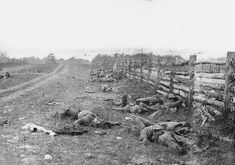 Dead Confederate soldiers from Starke's Louisiana Brigade, on the Hagerstown Turnpike, north of the Dunker Church. Photograph by Alexander Gardner.