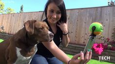 Pooch Selfie is the smartphone attachment which helps you take the best ...