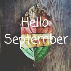 Hello September...August was a rough one here in Texas. Praying September brings some peace, renewal and hope. Please keep Texas in your prayers as we start the recovery process.