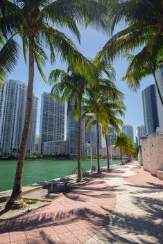 Where to Stay in Miami - Neighborhoods & Area GuideYou can find Miami beach and more on our website.Where to Stay in Miami - Neighborhoods & Area Guide Miami Florida Vacation, Visit Florida, Destin Florida, Florida Travel, Travel Usa, Travel Tips, Vacation Deals, Air Travel, Travel Deals