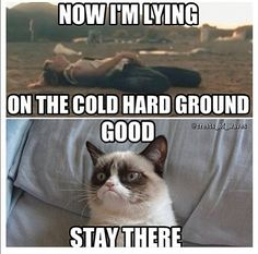 Shouldn't have gotten wasted then douchebag. Grumpy cat is absolutely correct in her assessment of your life choices.I concur wholeheartedly. Therefore continue to lie on the cold hard ground and catch pneumonia.