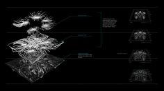 Encoded Matter // Stigmergic // Processing Workshop // AADRL - data-intensive city