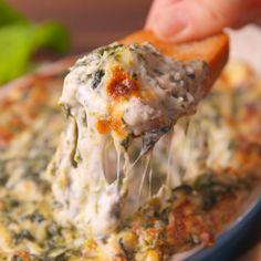 Spinach Dip Caesar spinach dip is the cheesy appetizer you need. Yummy Appetizers, Appetizer Recipes, Dinner Recipes, Spinach Appetizers, Crab Appetizer, Seafood Appetizers, Pesto Hummus, Cooking Recipes, Healthy Recipes