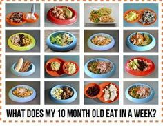 Modern Day Homemaker: What Does My 10 Month Old Eat in a Week? A great list of table foods for meals and snacks for children following baby led weaning.