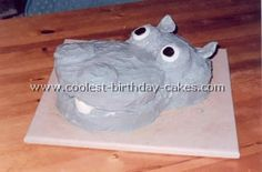 What the hell is up with these hippo cakes? #mikaylajanehoard