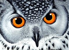 Eagle Owl acrylic painting by MandarinMoon.deviantart.com on @DeviantArt