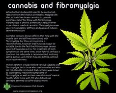 http://www.kingstoncompassion.org/medical-cannabis/medical-symptoms/fibromyalgia/