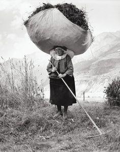 Fienagione a Cogne, 1959