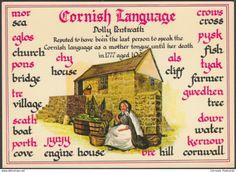 The Cornish Language, - Murray King Postcard Welsh Words, Welsh Language, Schools In London, British Travel, England Ireland, Devon And Cornwall, Kingdom Of Great Britain, Poldark, Northern Ireland