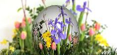 Easter Songs: What's the Best Easter Song or Hymn