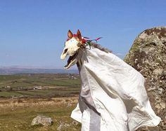 Museum of Witchcraft Diary: Mari Lwyd visits the Museum of Witchcraft on Halloween