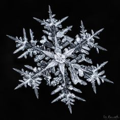 Photographer Spent Hours Capturing Stunning Photos of Complex Snowflakes - Fotoinspiration Nature - Snowflake Photography, Winter Photography, Macro Photography, Adobe Photography, Photography Ideas, Snowflake Pictures, Images Of Snowflakes, Art Et Nature, Snow Flake Tattoo