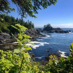 Long drive but made it to the edge of Canada. Ucluelet is rugged and beautiful #uculet #westcoast