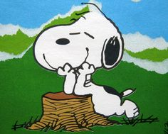 ☀️Happiness is.a beautiful day! Snoopy Cartoon, Snoopy Comics, Peanuts Cartoon, Peanuts Snoopy, Snoopy Love, Snoopy And Woodstock, Peanuts Characters, Cartoon Characters, Childhood Friends
