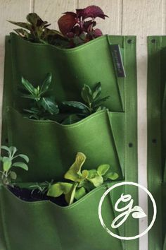 Those shoe organizer things that hang in the closet? Those totally work as planters for herbs and flowers! Save loads of space with this easy DIY vertical garden tutorial.