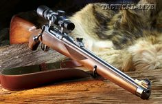 Ruger M77RSI. Great woods gun in a short action such as 243