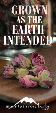 Mountain Rose Herbs. A Herbs, Health & Harmony Com