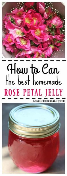 Easy recipe for canning rose petal jelly. Rose petal jelly tastes exactly like roses smell! It has a distinctly floral taste and is colored the same color as the roses with no added food coloring! Jelly Recipes, Jam Recipes, Canning Recipes, Cooker Recipes, Curry Recipes, Recipes Dinner, Home Canning, Canning Tips, Gourmet