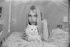Mia Farrow fotografiada en 1964. | Galería de fotos 1 de 31 | Vanity Fair