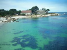 Monterey Bay, California - I have kayaked out on these beautiful waters and have visited with the otters. LOL!