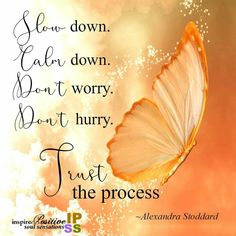 Slow down Beautiful!!!!!  As a butterfly trust the process......