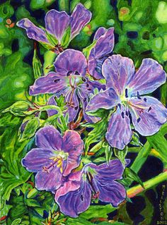 Five Wild Geraniums  Giclee print on canvas  by MorganRalston, $28.00