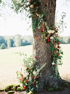 27 Romantic Wedding Tree Backdrops And Arches – Trend Decor for You! Red Wedding Flowers, Tree Wedding, Farm Wedding, Floral Wedding, Purple Wedding, Wedding Ceremony Ideas, Ceremony Backdrop, Wedding Venues, Wedding Weekend