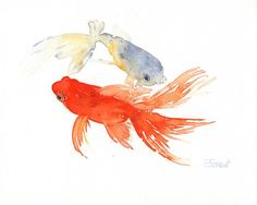 CURIOUS GOLDFISH  Watercolor painting by Eva Forest by EvaForest