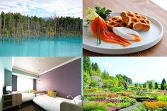 Some of the most beautiful places to visit in Hokkaido such as the Blue Pond and Furano's lavender fields are close to Asahikawa. Stay at Hoshino Resorts OMO7 Asahikawa and explore this amazing area! There's an exclusive discount for MATCHA's readers!