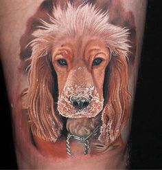 We have the list of Amazing Dog Tattoos For Dog Lovers. People are loosing their minds behind dog tattoos today. 40 Amazing Dog Tattoos For Dog Lovers Head Tattoos, Music Tattoos, Wolf Tattoos, Animal Tattoos, Tatoos, Cocker Spaniel, Tattoo Perro, Tattoo Fixers, Dachshund Tattoo