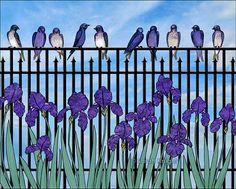 purple martins & purple irises - birds violet blue flowers fence green leaves