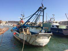 Porto, Boat, Trani, Puglia, Italy