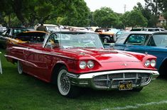 1960 red ford thunderbird convertible. i've wanted this car for a long long time.