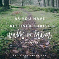 """""""Therefore, as you have received Christ Jesus the Lord, walk in Him, rooted and built up in Him and established in the faith, just as you were taught, overflowing with gratitude."""" -Colossians 2:6-7 HCSB#SheReadsTruth #ThisISTheGospel"""
