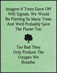 TOP IRONY quotes and sayings : Imagine if trees gave off wifi signals, we would be planting so many trees and we'd probably save the planet too. Too bad they only produce the oxygen we breathe. Great Quotes, Quotes To Live By, Me Quotes, Funny Quotes, Inspirational Quotes, Daily Quotes, Funny Memes, Wisdom Quotes, Humour Quotes