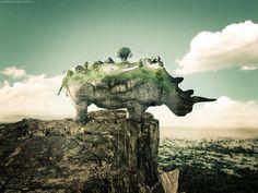 Rhinoceros Land by TahaAlasari on DeviantArt