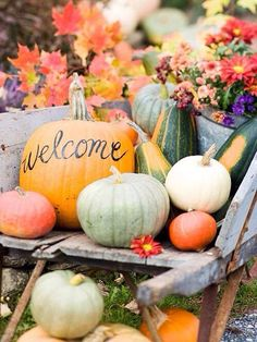 "Need to make a ""Welcome Home Caroline"" pumpkin for the front porch!"