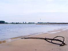 stilleven op 't strand