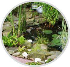 Gartenteich anlegen Terrarium, Garden Care, Horticulture, Terrariums