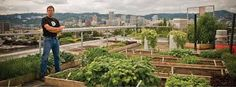 Growing food on the roof
