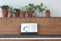 Urban Jungle Bloggers: Plants & Flowers by Marie Friis