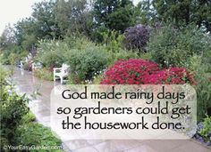 God made rainy days so gardeners could get their housework done. This is me!