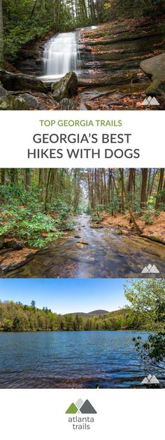 Grab a leash and hit the trail! Hike our favorite dog-friendly trails in Georgia, the all-time favorites of our canine hiking buddies, Amber and Jake. #hiking #backpacking #atlanta #georgia #travel #outdoors #adventure