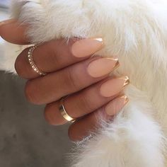 Matte and Gold Metallic French Tip Nail Design